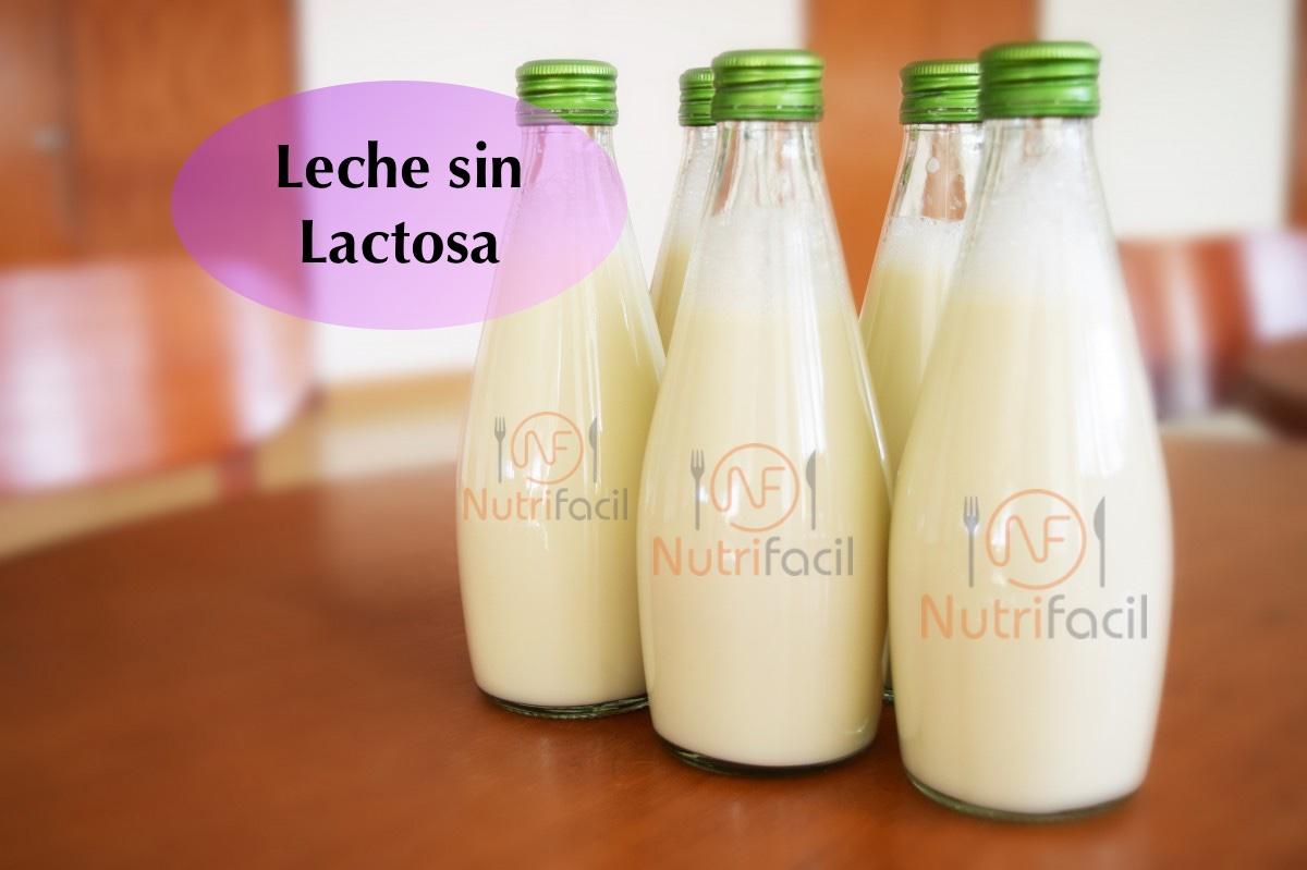 Intolerancias derivadas por la leche sin lactosa