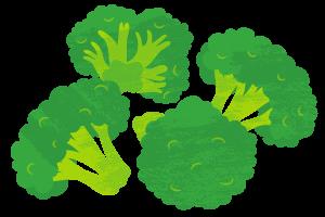 El brócoli en la dieta para opositores