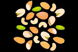 Los frutos secos, alimento para opositores