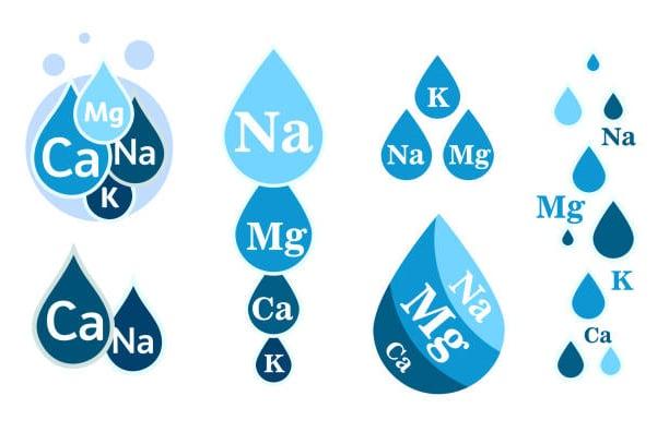 Principales electrolitos perdidos por la deshidratación
